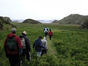 Wilderness Guide